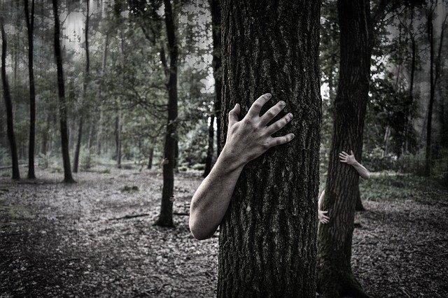 森林のオバケ