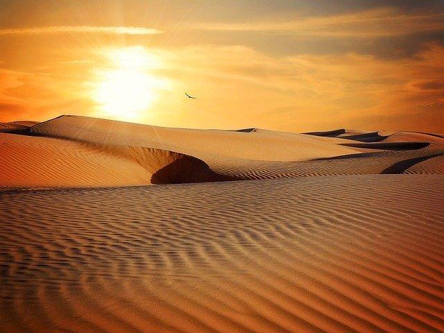 砂漠 「火の鳥<大地編>」